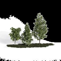 「高颜值」绿植花艺模型
