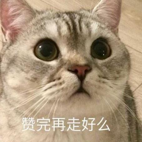 Crys丶美男